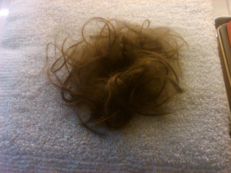 Hair Pile 12-30-2012