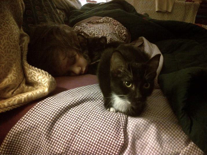 Tuxedo Kittens with Nora